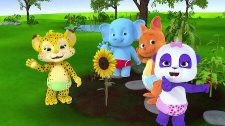 Watch Bailey's Garden. Episode 1 of Season 2.
